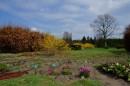 Wiosenne rozsady