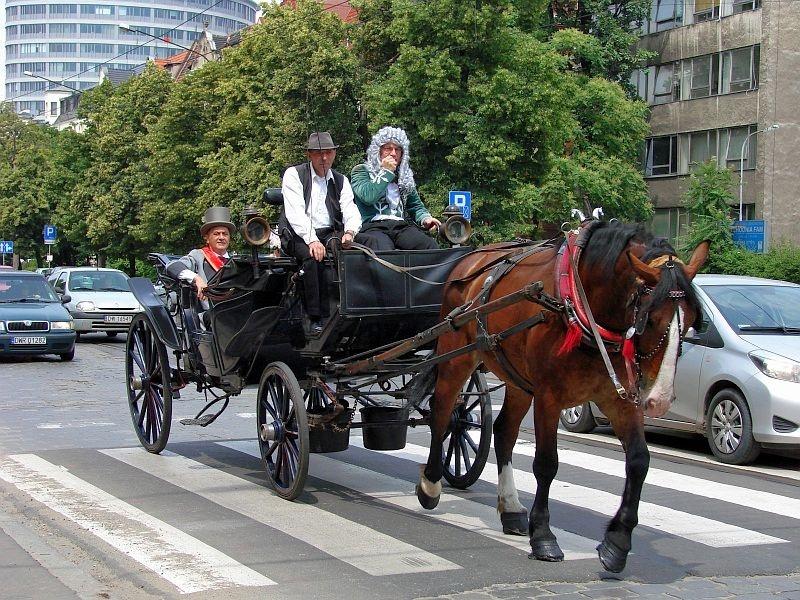 100 lat Hali Stulecia we Wrocławiu. Piknik urodzinowy