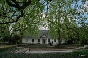 Gra muzyka, czyli spacer po parku w Żelazowej Woli