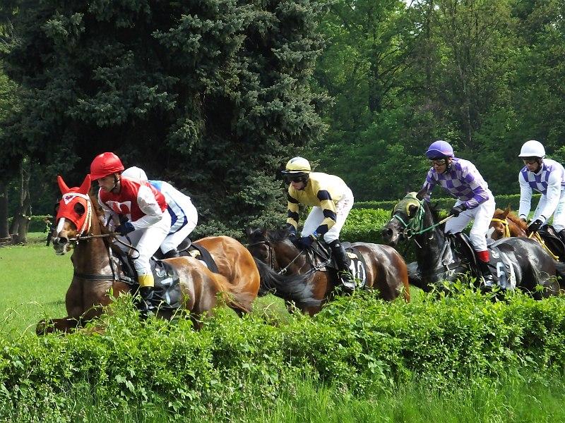 Otwarcie sezonu na Wrocławskim Torze Wyścigów Konnych