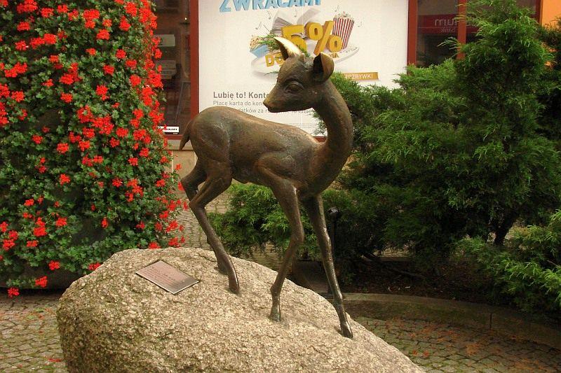 Jelenia Góra – miasto do odkrycia