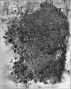 Dezintegracja V, 1979, popiół z spalonych fotografii, żywica epoksydowa, płótno, 50 cm x 40 cm