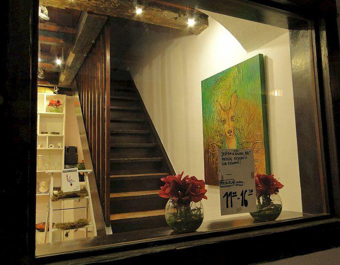 Przestrzeń dla piękna. Zawodowcy i amatorzy w Galerii BB