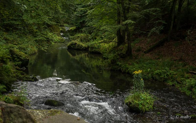 Wąwóz Edmunda – magiczne miejsce  w Czeskiej Szwajcarii