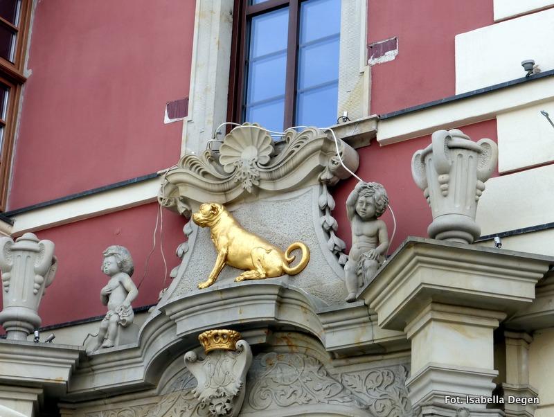 Wrocław w moim obiektywie