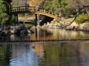 Ogród Japoński w Parku Szczytnickim