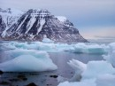 Icebergs from Greenland having a visit