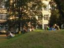 Zielony teren przed odremontowaną Akademią Sztuk Pięknych
