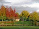 LA BOUZA  park