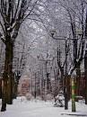 Ulica Księży Młyn zimą